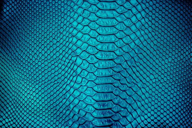 cerca-uso-textura-piel-serpiente-lujo-fondo_34836-2426