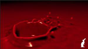 poesia sangre le folie revista